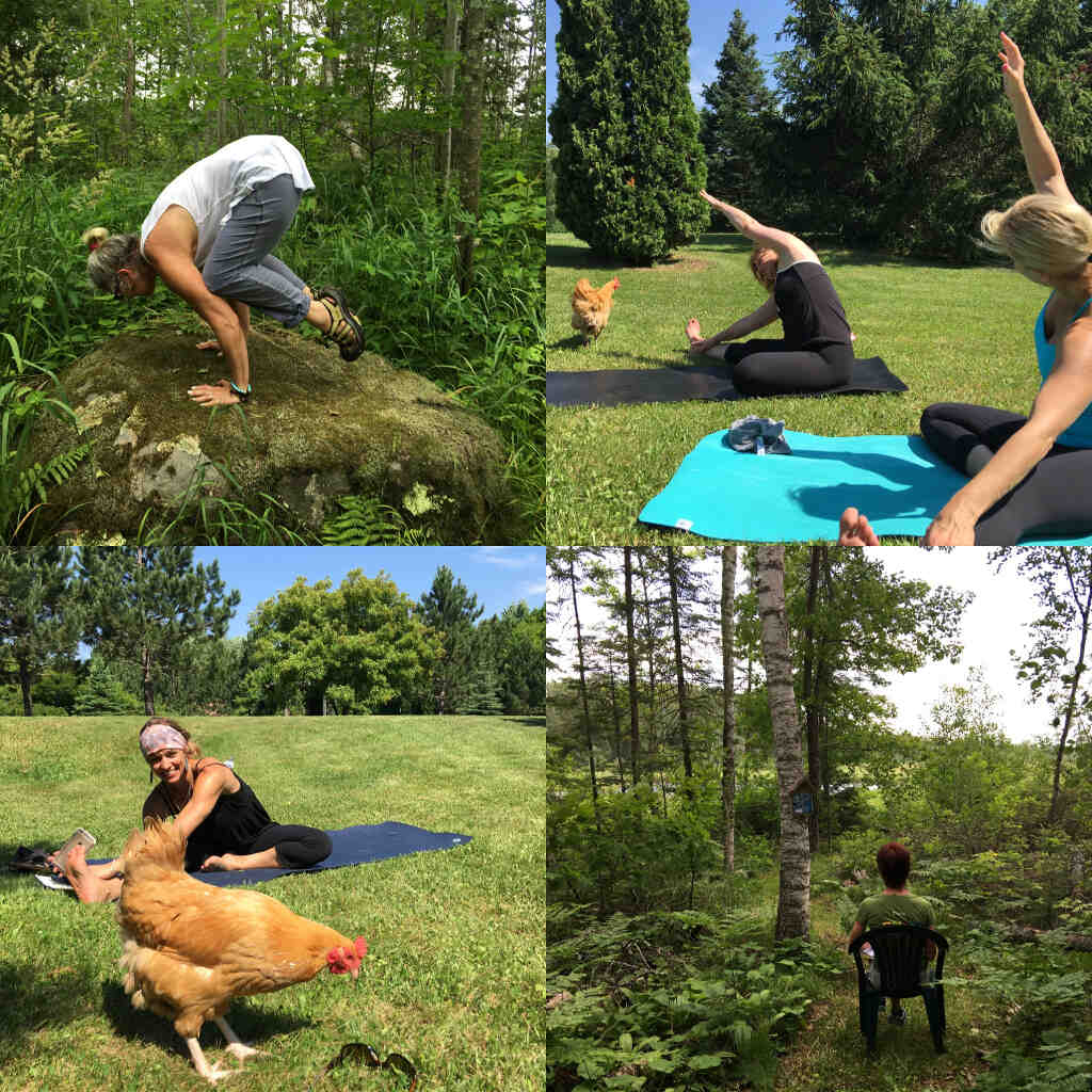 attractions_yoga